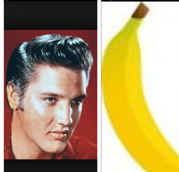 Elvis Banana, Smaller Version