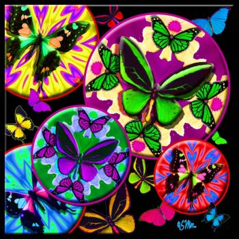 Butterfly Wheels.......