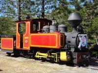 Wedding Train, Port Douglas