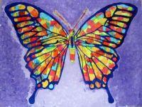 Butterflies from Chile; purple butterfly,