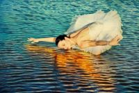 Swan Dancer