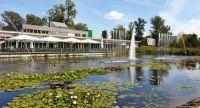 Teich mit Seerosen und Springbrunnen