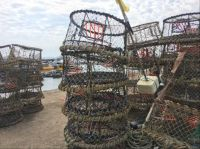 Lobster pots at Poole harbour