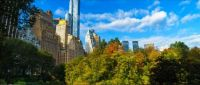 View of skyscrapers from Central Park in Manhattan, New York
