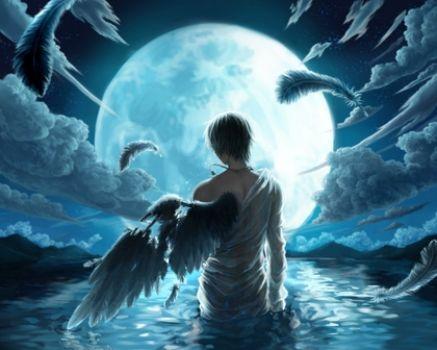 Boy Water Wet Blue Hair Feathers Fallen Male Anime Jewelry Full Moon Cloud Night Sky Kuroko No Baske Animalhi 13