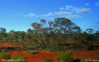 Indian Pacific route NSW