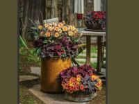 rustic fall planters, large