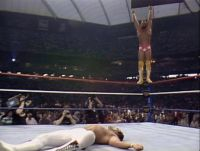 Wrestlemania III Intercontinental Title Match