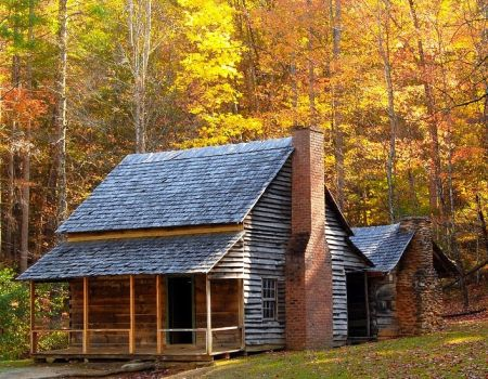 Log Cabin By The Woods...