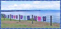 The Jandal Fence at Lake Taupo..