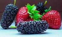 fruits-62