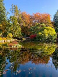 Fall colors at Hatley Castle in Victoria