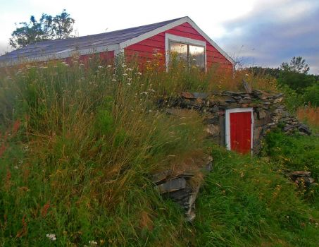 Root Cellar with Wildflowers, Bay Roberts, NL Canada