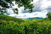 A View from the Blue Ridge Parkway in Virginia, July 3, 2021