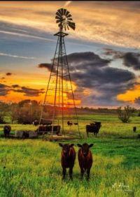 Windmill and Nebraska Sunset