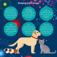 Keep your pets safe !