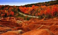 Cheltenham Bedlands - Canada