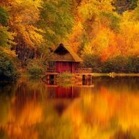 autumn on the pond