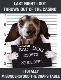 So doggone cute!
