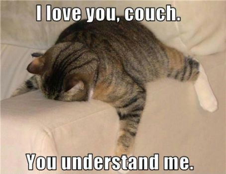 I love you, couch