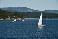 Sailboats off the San Juan Islands, Washington, late August 2021