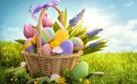 colorful-easter-eggs basket