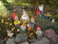 Gartenzwerge, garden gnomes, nains de jardin