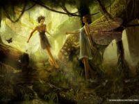 Fairies meeting