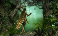 Robin of Sherwood (large)