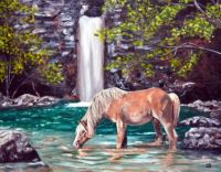 Waterfall and Horse by Jeffrey Dale Starr