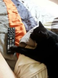 Changing the channel mom!