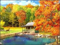 Remember the beauty of autumn