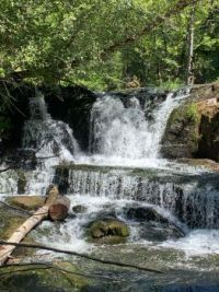 Alsea Falls