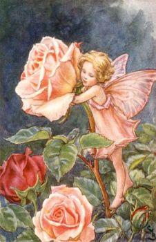 Rose vintage fairy