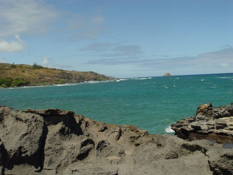 Turtle Rock - Kuai