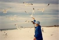 Dad Feeding Sea Gulls