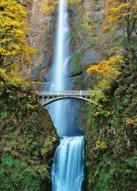 Mt. Hood National Forest, Oregon,  Waterfalls and Bridge
