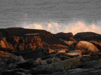 We bid farewell to Acadia National Park.