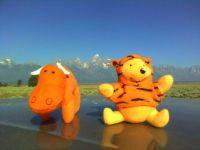 Mini Moose and Pooh at Grand Tetons