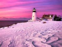 Pink is the colouring in Pemaquid ..