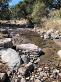 Stream at the ranch