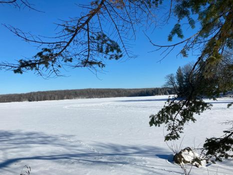 Winter Photo (for Izzy)