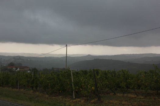 Storm is coming (Brusalino in northern Italy)