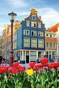 Colors Of Amsterdam