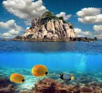 Coral reef, Thailand!