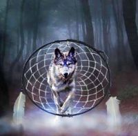 77- Dream Wolf by Diana Shively