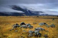 Tasman Valley, South Island, NZ