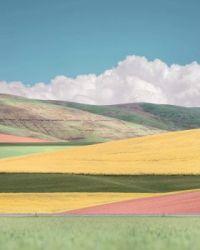 """"""" Surreal Landscape"""""""
