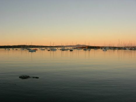 Oak Bay Marina 3