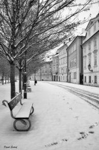 Zima na Kampě - Winter in Kampa